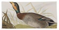 Bemaculated Duck Beach Towel by John James Audubon