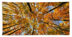 Beneath The Canopy Beach Towel by Edward Kreis