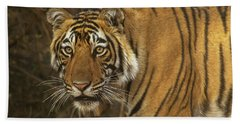 Bengale Tiger Beach Towel