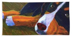 Beach Towel featuring the painting Bernese Mtn Dog On The Deck by Donald J Ryker III