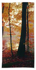 Bernharts Dam Fall 031 Beach Towel by Scott McAllister