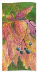 Berry Challenge Beach Towel by Denise Hoag