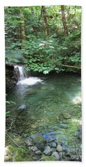 Beach Towel featuring the photograph Beyond The End Of The Trail At Limpy Creek by Marie Neder