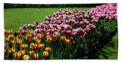 Multicolor Tulips Beach Sheet