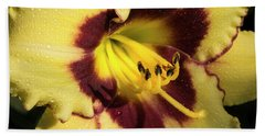 Beach Towel featuring the photograph Bicolored Lily by Jean Noren