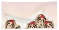 Beach Towel featuring the painting Biewer Pack by Catia Lee