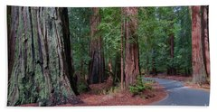 Big Basin Redwoods Beach Sheet