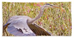 Big Bird In Flying Color Beach Sheet by Judy Kay