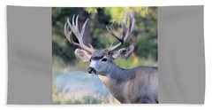 Beach Towel featuring the photograph Big Buck by Shane Bechler