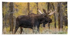 Beach Towel featuring the photograph Big Bull Washakie by Yeates Photography
