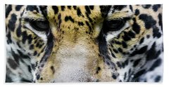 Big Cat Beach Towel by Suzanne Luft