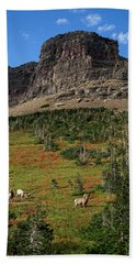 Big Horn Sheep Beach Towel