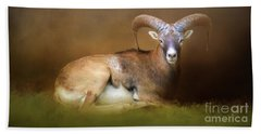 Beach Towel featuring the photograph Big Horn Sheep by Marion Johnson