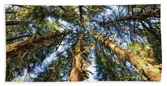 Big Trees In Olympic National Park Beach Towel