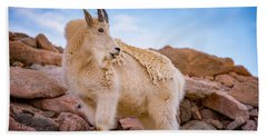 Billy Goat's Scruff Beach Towel by Darren White
