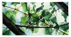 Biltmore Grapevines Overhead Beach Sheet