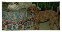 Beach Towel featuring the photograph Binkley And  Ginger by Samuel M Purvis III