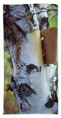 Birch Bark, Leaf And Nest Beach Towel