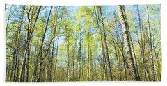 Birch Forest Spring Beach Sheet