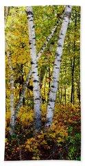 Birch In Gold Beach Towel