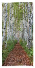Birch Path Beach Sheet