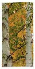 Birch Tree Beach Towel