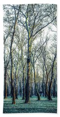 Birch Tree Woodland Beach Towel by Lana Enderle