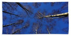Birch Trees In Winter Beach Towel
