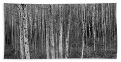 Birch Tress Beach Towel