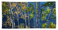 Beach Towel featuring the photograph Birches On Lake Shore by Elena Elisseeva