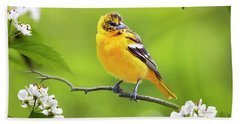 Bird And Blooms - Baltimore Oriole Beach Towel by Christina Rollo