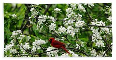 Bird And Blossoms Beach Towel