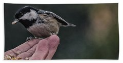 Bird In The Hand  Beach Towel