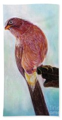 Bird Beach Towel by Jasna Dragun