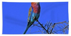 Bird - Lilac-breasted Roller Beach Towel