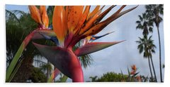 Bird Of Paradise Peace And Joy Beach Sheet