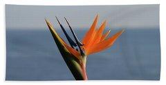 Bird Of Paradise Beach Sheet