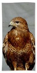 Bird Of Prey  Beach Sheet