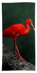 Bird On A Catwalk Beach Towel