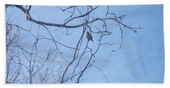 Bird On A Limb Beach Towel