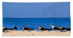 Birdline Beach Towel