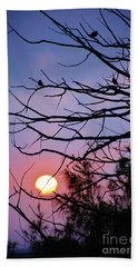 Birds At Sunset Beach Towel