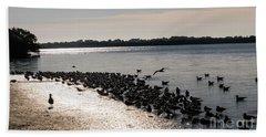 Birds At The Beach Beach Towel
