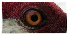 Birds Eye Beach Towel