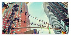 Birds In New York City Beach Sheet