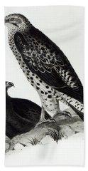 Birds Of Prey Beach Sheet by Charles Darwin