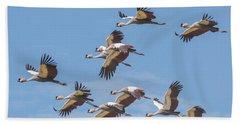 Birds Of The Same Feather. Beach Sheet