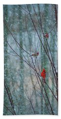Birds On A Snowy Day Beach Towel