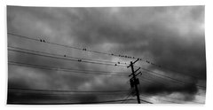 Birds On A Wire 2018 Beach Sheet