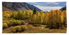 Bishop Creek Aspen Beach Sheet
